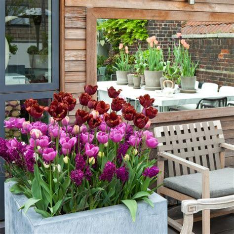 flowers for balcony garden balcony garden decorated beautiful flowers house design