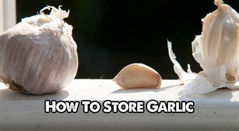 methods  storing garlic