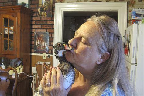 vermont family win battle   pet duck cbs news