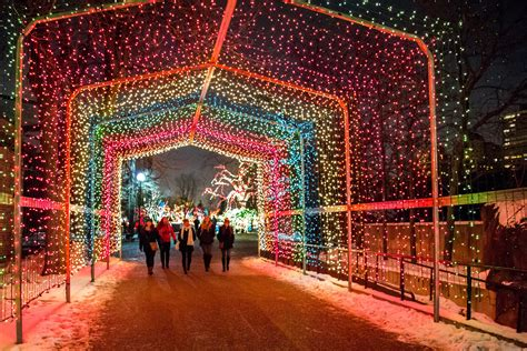 lincoln park zoo christmas lights chicago holiday lights tour holiday lights trolley