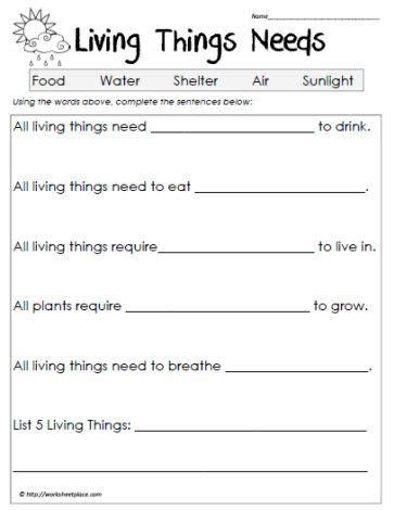 best 25 science worksheets ideas on grade 2