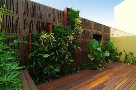 wall gardens melbourne melbourne modern courtyard modern patio melbourne by phillip withers landscape design