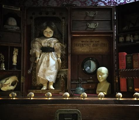 the cabinet of curiosities the cabinet of curiosities challenge part 2 dan baines