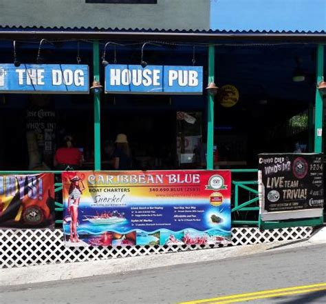 dog house pub photo1 jpg picture of dog house pub st thomas tripadvisor