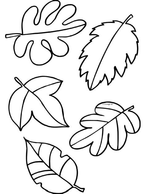 kleurplaat herfst blaadjes bladeren kleurplaten nl