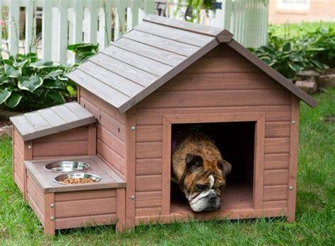 Cuccia Per Gatti Da Esterno Fai Da Te by Cucce Per Cani Da Esterno Come Costruire Una Cuccia Per