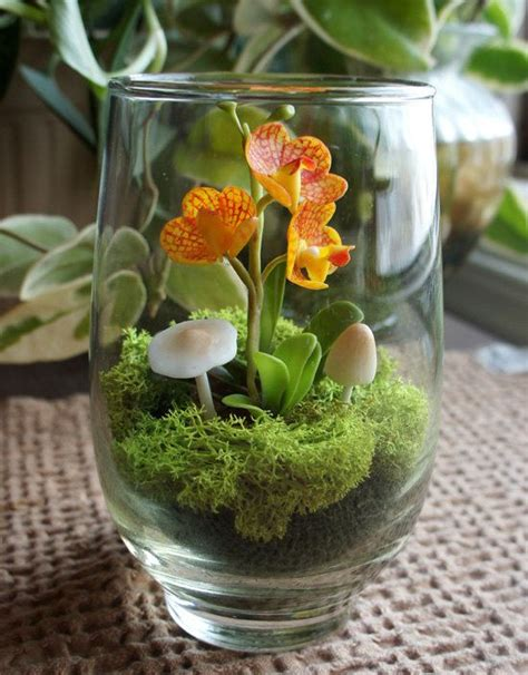 How To Decorate Pot At Home make an orchid terrarium in 5 minutes small garden ideas