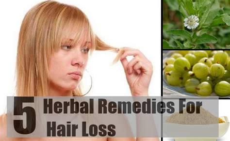 natural treatments for alopecia hair loss best herbal remedies for hair loss hair loss treatment