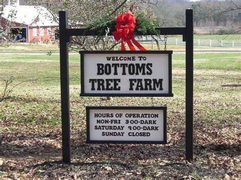 christmas tree farms purchases in forsyth county