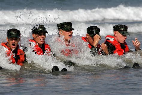navy and bud s navy seals