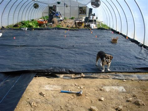 Landscape Fabric Right Side Up Our Propagation Greenhouse Rocks Mountain Harvest Organics