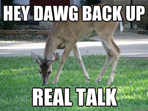 Deer Memes - black buck memes