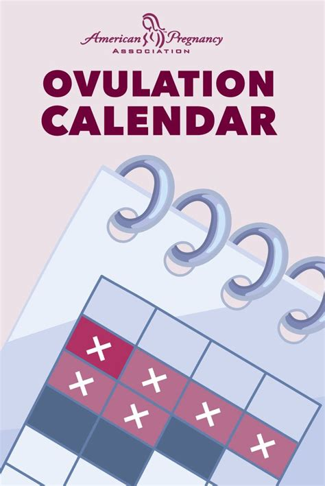 Calendar How To Conceive A 25 Best Ideas About Ovulation Calendar On