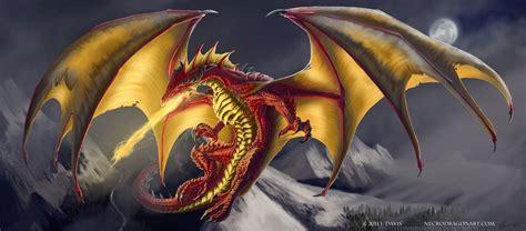 wallpaper gold dragon gold dragon 3 desktop wallpaper hivewallpaper com