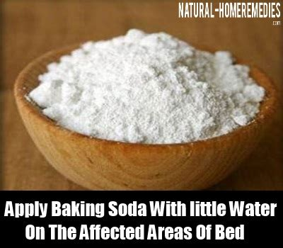 baking soda for bed bugs 12 herbal remedies for bed bugs how to cure bed bugs