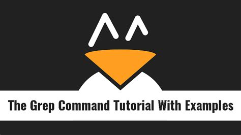 grep pattern exles the grep command tutorial with exles for beginners