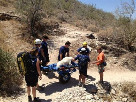 rescue dogs az firefighters rescue in distress on hike