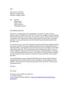 sle appeal letter for visa application appeal letter