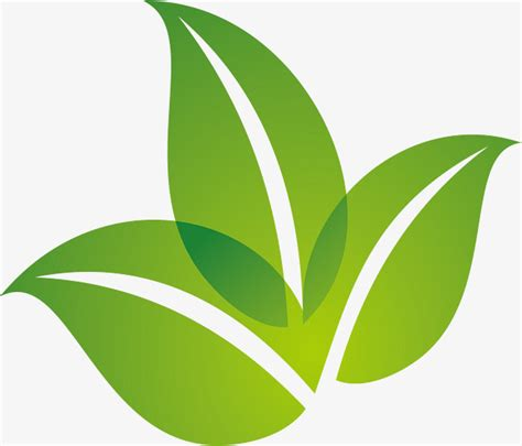 imagenes logos verdes la primavera de hoja verde dise 241 o de logotipo la