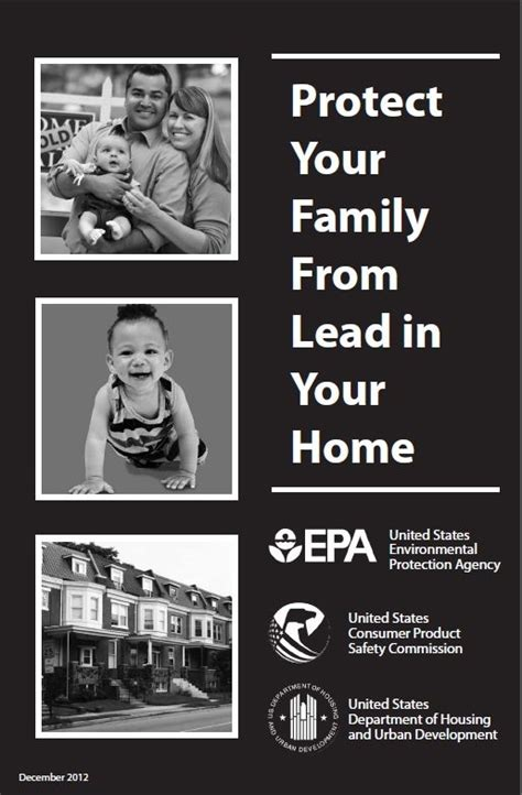 I Had Lead Poisoning And Detoxed With Collodial Silver by 1000 Images About Lead Poisoning On