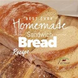 Easy Wheat Bread Machine Recipes Best Sandwich Bread Livinlovinfarmin