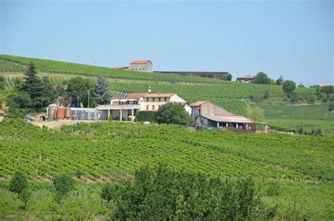 vini pavia azienda vitivinicola vigano pavia vino oltrep 242