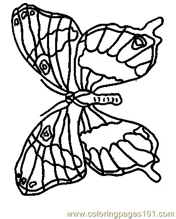 rainforest butterfly coloring pages rainforest butterfly coloring pages