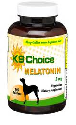melatonin dosage for dogs vet the use of melatonin in dogs dose rates info side effects