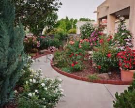 small garden with rosessouthwest desert gardening