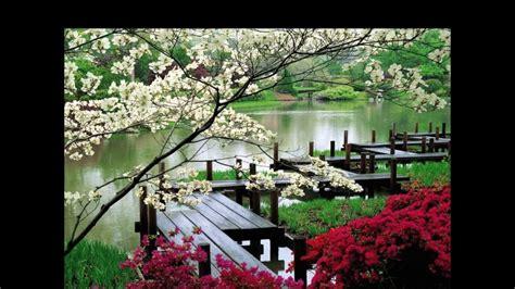fotos jardines japoneses