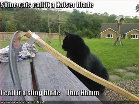 cats call   kaiser blade  call   sling blade uhm hhmm cheezburger funny memes
