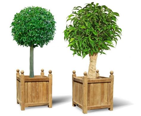 pair of large wooden versailles planters large wooden