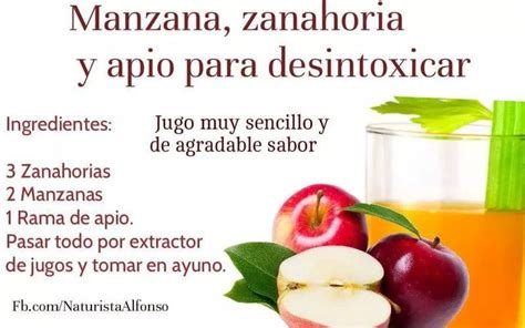 Fraser Health Detox by Batido Detox Batidos Verdes Detox