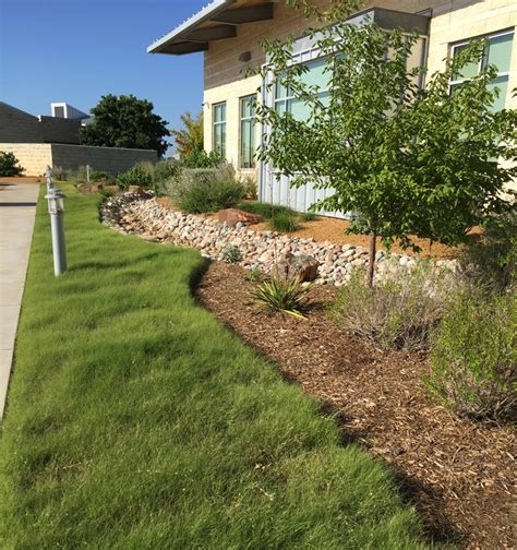 Landscape Architecture Tamu Water District Garden Demonstrates Efficiency Turf