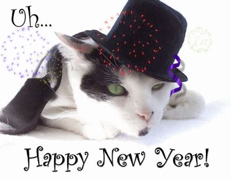 happy new year the year ahead katzenworld