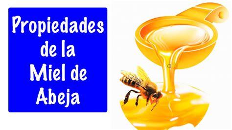 libro minicuentos de abejas y propiedades de la miel de abeja propiedades y beneficios de la miel youtube
