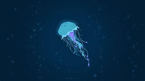 wallpaper jellyfish underwater hd creative graphics