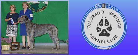 kennels colorado springs cskc colorado springs kennel club colorado