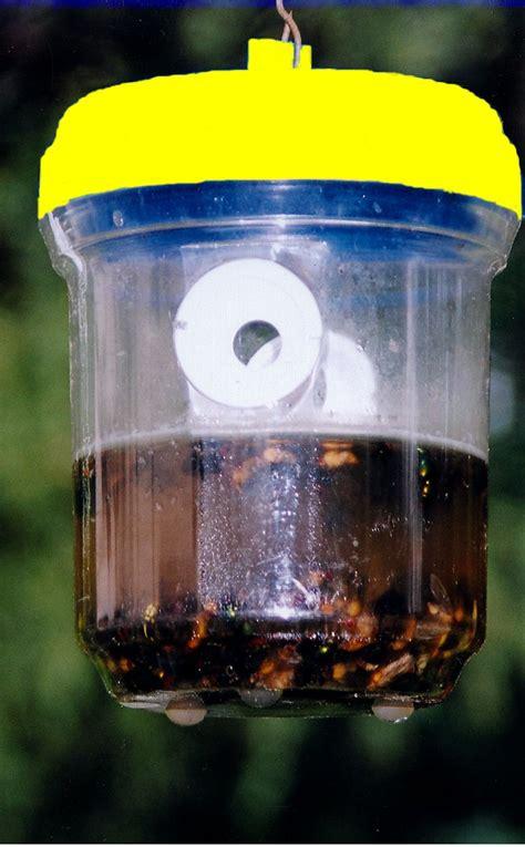 wasp traps greenkey garden home