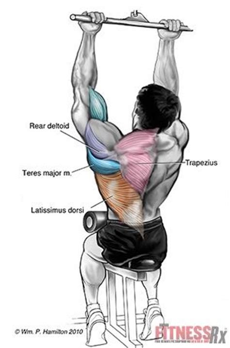 growing back wings with grip pulldowns workout