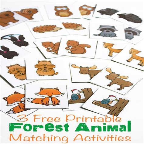 kindergarten themes animals 3 free printable forest animal matching activities