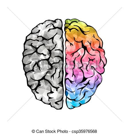brain clipart brain drawings clip art 101 clip art