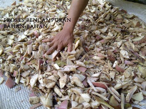 Pakan Ternak Hasil Fermentasi cara aman membuat pakan fermentasi ternak domba soc hcs