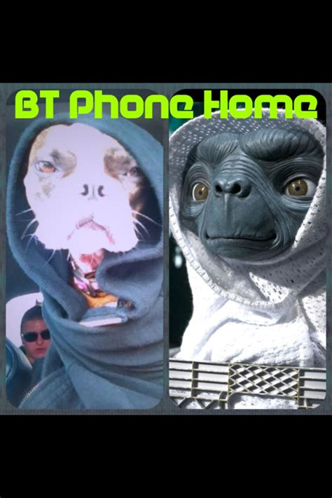 Bt Meme - boston terrier alien bt phone home meme boston terrier