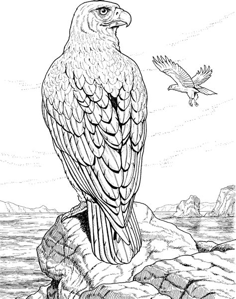 free coloring pages of an eagle free eagle coloring pages