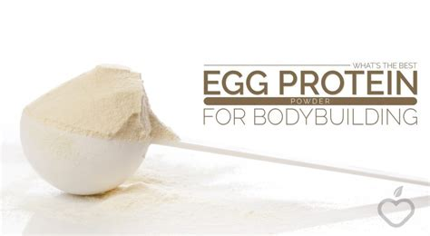 best building protein powder what s the best egg protein powder for building