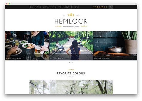 20 beautiful simple wordpress themes for writers 2018