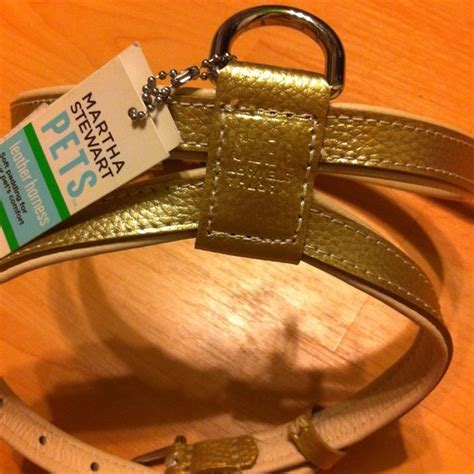 martha stewart harness 21 other martha stewart pets gold harness med from erica s closet on poshmark