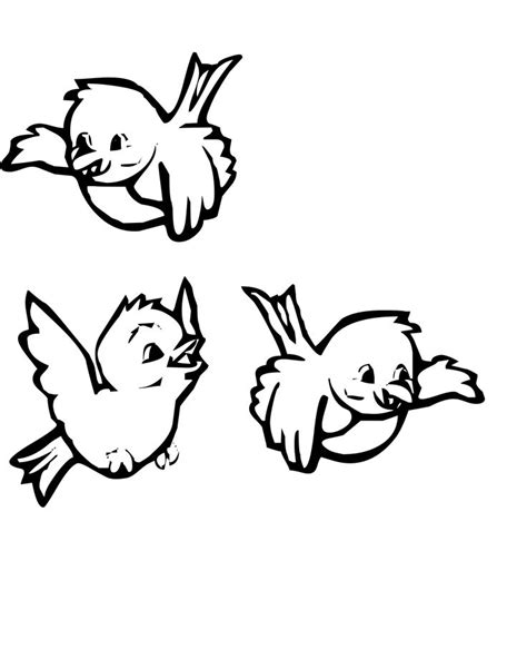 coloring pages cute birds three cute birds coloring pages coloring pages