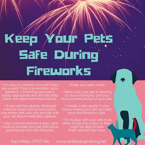 how to comfort dogs during fireworks how to keep your pets safe during fireworks smiles dog